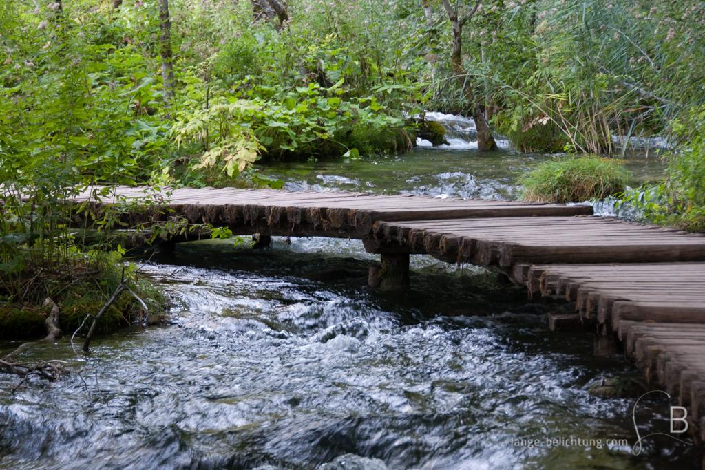 Über einen kleinen Bachlauf führt ein Holzweg. Der Fluss fließt direkt durch den Wald.