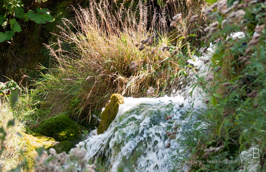 Ein kleiner Wasserfall ergießt sich mitten im grünen der Plitvitcer Seen. Der Wasserfall ist umgeben von Gräsern und anderen Pflazen. Durch das fließende Wasser schimmert Moos durrch.
