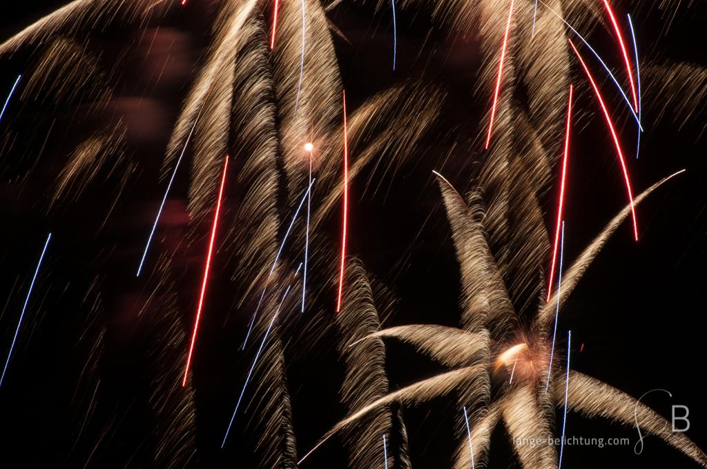Bei einem Feuerwerk bilden einzelne Explosionen goldene Palmenblätter. Dazwischen befinden sich rote und blaue Streifen.