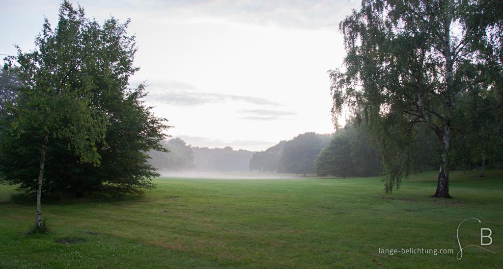 Nach einem Sommerregen steigt der Nebel in einem Park mitten in Berlin auf.