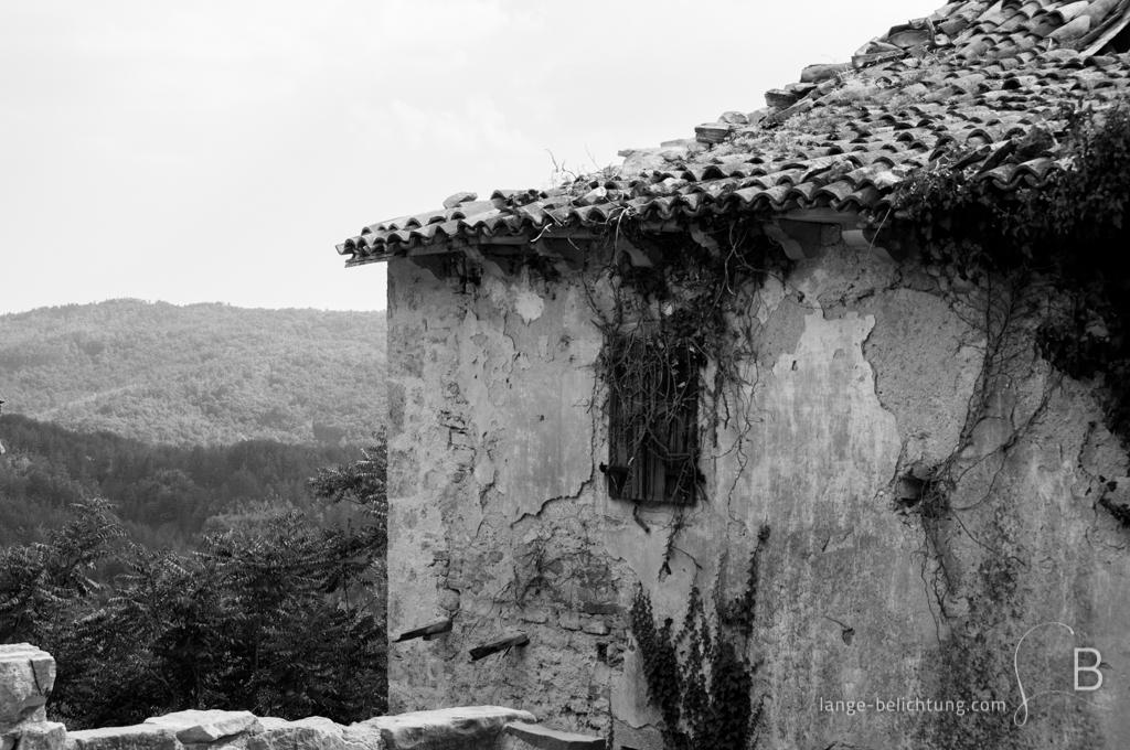Ein verlassenes Haus in den Bergen wird langsam von der Natur zurück erobert. Im Hintergrund sieht man die weiten Wälder der Landschaft.